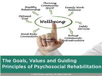 Goals, Values and Guiding Principles of Psychosocial Rehabilitation